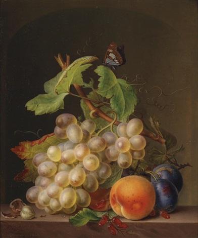 stillleben mit weintrauben aprikose pflaumen und schmetterling by moritz tettelbach