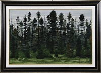 black spruce forest by jacques godefroy de tonnancour