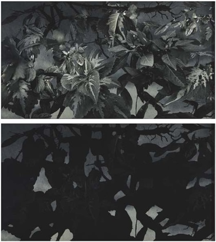 melee de guerriers nus de etienne delann diptych by adriana varejão