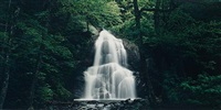 moss glen falls, glen fall, green moutains, vermont (+ kaaterskill falls, catskill mountains, new york; 2 works) by john pfahl