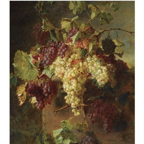 a still life with grapes by adriana johanna haanen