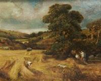 the cornfield by jack cudworth