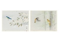 beauty of the seasons (portfolio) by atsushi uemura