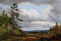 wind blown pine, wakefield by bruce heggtveit