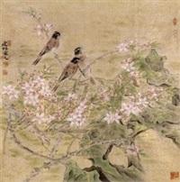 花鸟 by jiang jianlin