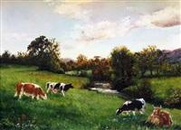 cattle in the glen by sarah corner