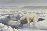 polar bears by marla wilson