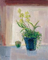 觀音素心蘭 (cymbidium ensifolium) by jan chinshui