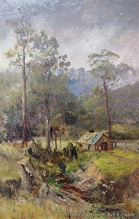 fern tree gully near melbounre by james peele
