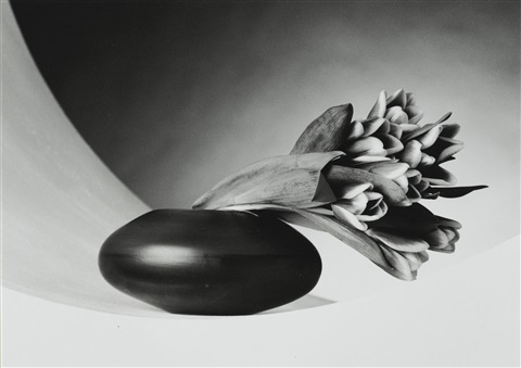 tulips just to thank you and christmas tree 2 works by robert mapplethorpe