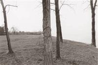landscapes by roger mertin