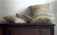 cushions and books by renato meziat