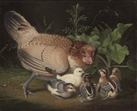 a hen and chicks in a landscape by jacob samuel beck