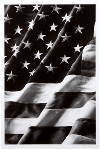 flag by robert longo