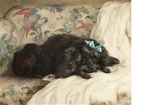 recumbent poodle by florence jay