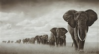 elephants moving through grass, amboseli by nick brandt