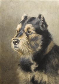 portrait of a welsh terrier by frances c. fairman