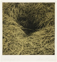 hole no.2 - grass by alison rossiter