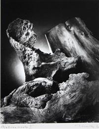 nature morte ii by joachim lischke
