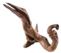 sea creature by jackson mbhazima hlungwane