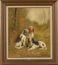 les chiens de chasse by henry schouten