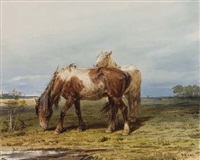 two horses in a field by petr petrovich sokolov