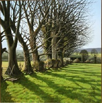 spring sunlight, co wicklow by eugene conway
