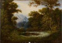 etang en forêt by vicente camaron y torra