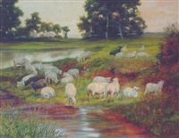 sheep resting by a pool by richard kennedy