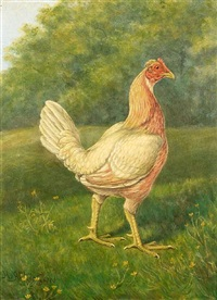 pyle cock (+ pyle hen; pair) by h. atkinson