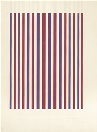 red and blue, expanded by bridget riley