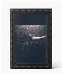 untitled (bird box) by joseph cornell