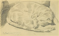 a study of a marmalade cat by william nicholson
