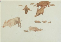 pigs on aran by maurice macgonigal