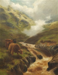 highland rovers by douglas cameron