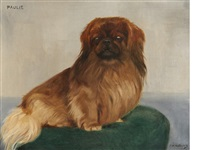 paulie, a pekingese by frances mabel hollams