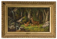 the woodlands by john white allen scott