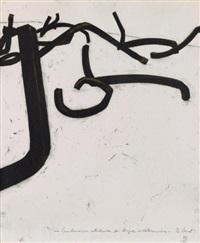 combinaisons aleatoires de lignes indeterminees by bernar venet