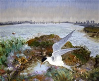 estuary with tern by sir cedric lockwood morris