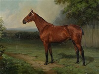 study of a race horse in a field by thomas percy earl