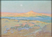 desert by moonlight by bertha menzler peyton