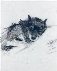 étude de chien (study) by ernest joseph laurent