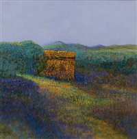 field and stones by john picking