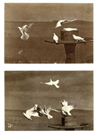 vol d'oiseaux (2 works) by ottomar anschutz