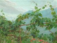 parti fra civita d'antino med vinstokke og blomster by henrik benedikt olrik