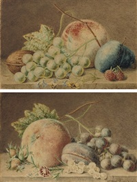 assorted fruits, nuts and leaves (+ another; pair) by adriana van ravenswaay