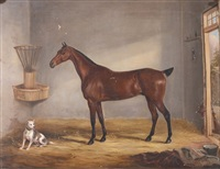 a bay horse in a stable with dog by william webb