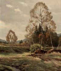 aulandschaft mit birken by emil arends