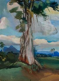 cupel tree, santo domingo by carl sprinchorn