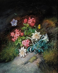 alpenblumen by theodor petter